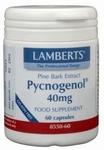Lamberts Pycnogenol 40 mg 60vc