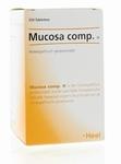 Heel Mucosa compositum H 250tab