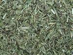Weegbree smal gesneden - Plantago lanceolata