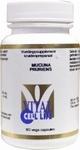Vital Cell Life Mucuna pruriens (15% L-Dopa) 60vcaps