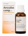 Heel Aesculus compositum H  30ml