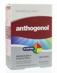 Masquelier Anthogenol  60vcaps