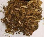 Berberisbast gesneden - Berberis vulgaris