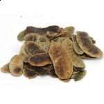 Sennapeulen heel - Cassia angustifolia