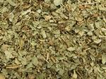 Vrouwenmantel - Alchemilla mollis